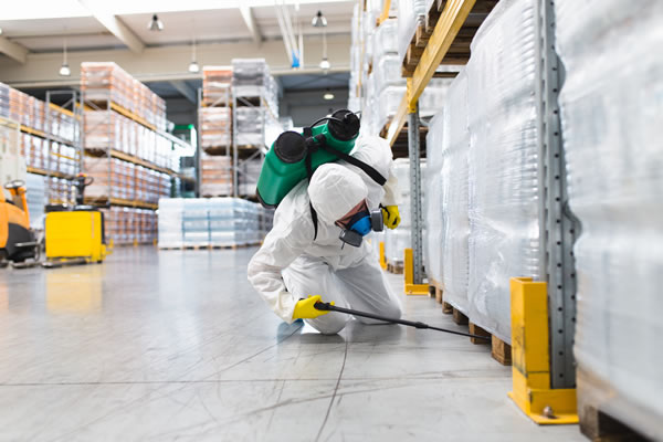 pest control services in surrey