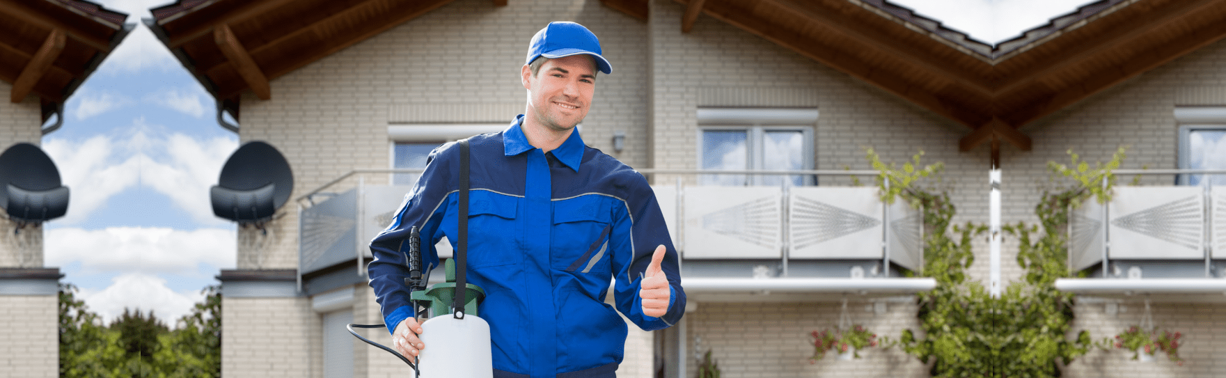 pest exterminators surrey first